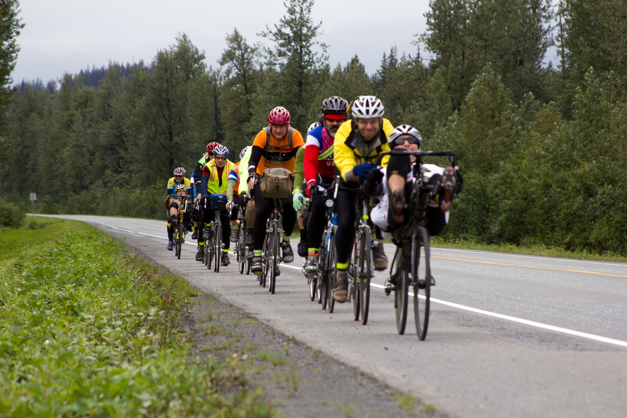 A paceline of bicyclists on the road