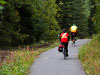 two cyclist on wooded bike trail